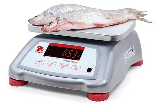 Kompakte Tischwaage Valor 4000, auch für rauhe Umgebungen sowie im Nassbereich